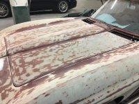 Stripping paint 1.jpg
